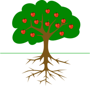 good root = good fruit